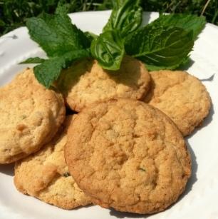 Mint & Basil Sugar Cookies | Mintgrapefruit.com